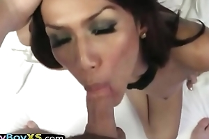 Asian ladyboy bareback screwed POV style apart from a trsnger
