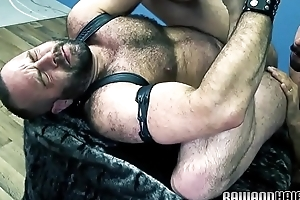 Queasy bear assfucked after being rimmed